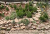 Grass Garden 2 (8806-8808)
