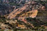 Canyon Color.jpg