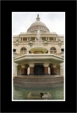 Mallard at the Capital.jpg