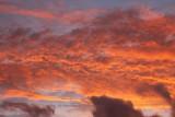 Sunset Springvale