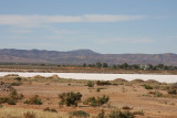 Salt Lake near Port Augusta