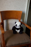 Hilton Panda