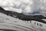 gletstjertocht