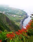 EN ROUTE - FAIAL ISLAND - AZORES