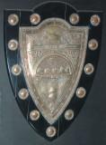 A cool shield