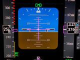 Primary Flight Display