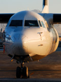 Fokker on Kabul