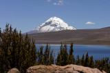Lago Chungará and Volcán Sajama (6542m)