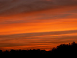 4-4-09Z6 Sunset 2.jpg