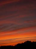 4-4-09Z6 Sunset 3.jpg