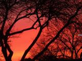 1-16-2010 Sunrise 3.jpg