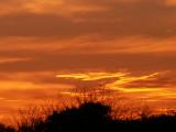 3-4-2010 Sunset 4.jpg
