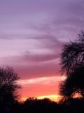 3-14-2010 Sunset 1.jpg