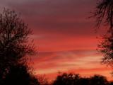 3-14-2010 Sunset 4.jpg
