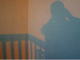 Wallshot  8-2004
