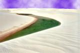 The desert mouth ...