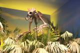Panther Skeleten