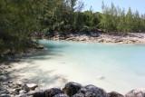 Iguana Cove
