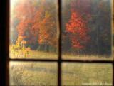 Cade's Cove Window