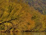 Little River in Walland 2