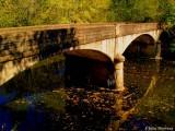 Abandonded Bridge