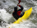 Kayaking The Little River 1