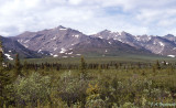 view in Denali National Park