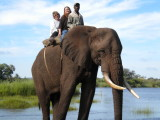 Our official Elephant safari picture.jpg