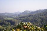 Hills Buddha Dhatu Jadi.jpg