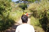 Path on Meghla Parjatan.jpg