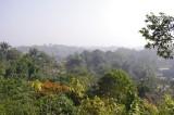Cox's Bazar from Mountaintop (2).jpg