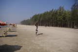 Man Carrying Logs on Beach.jpg