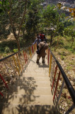 Taking a Photo on Himchari Path.jpg