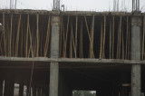 Bamboo Used in Construction.jpg
