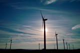 Windy Giants