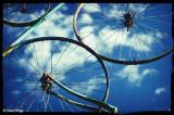 59-bike-wheels.jpg