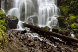 Fairy Falls Spring 2010