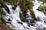 Wakeena Creek in February 2008