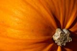 Pumpkin End