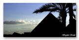 shadows round the pyramids