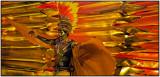 Carnaval Panoramico
