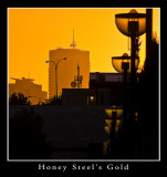 Honey Steel's Gold