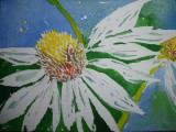 Daisy 2, minature £20