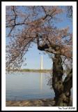 Spring Monument