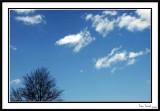 My Own Sky
