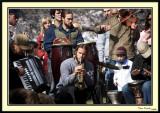Spring Band 2