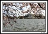 Jefferson_Memorial.jpg