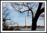 Washington Monument 14