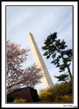 Washington Monument 21