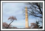 Washington Monument 24